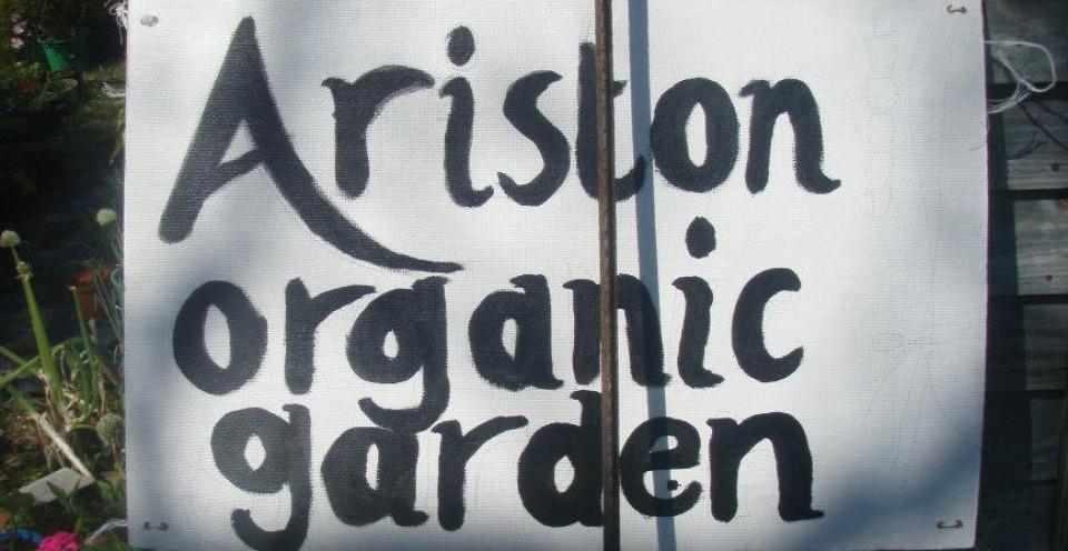 aristonorganic