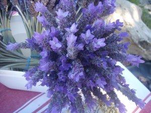 Lavender posie