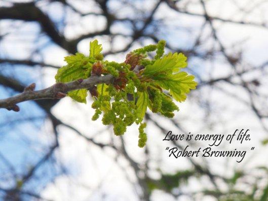 energy_of_life_by_selinarainbowmoon-d5jfdv7