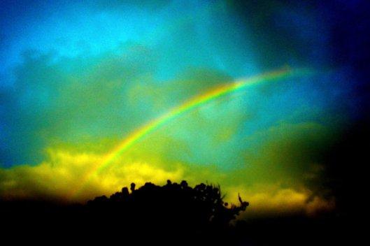 rainbowsrm