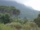 brooding mountain