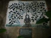 The spirit woman of Ajo Sacha