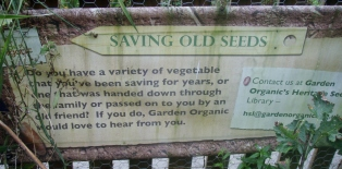 Do you save your seeds?