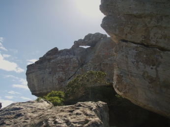 A stone guardian