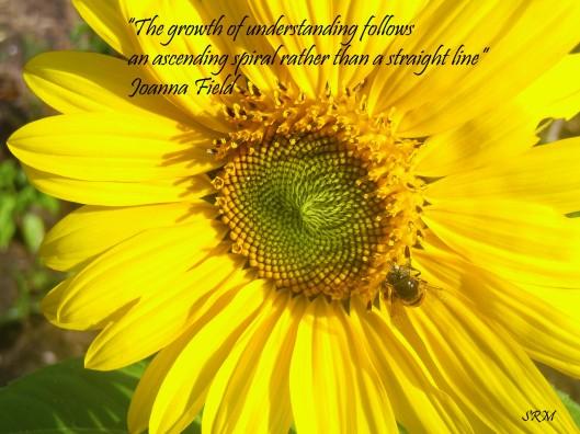 """The growth of understanding follows an ascending spiral rather than a straight line"" Joanna Field"