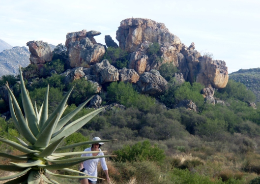 Leopard Rock - The KhoiSan used to gather here in a cave.