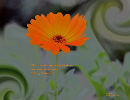 There are always flowers for those who want to see them.  Henry Matisse