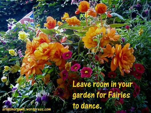 Leave room in your garden for Fairies to dance