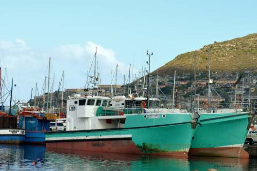 Hout Bay has one of the busiest fishing harbours in the Western Cape